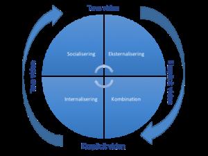 SECI modellen